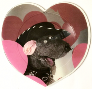 "Roland Rat Superstar ‎- Love Me Tender (7"") (Shaped Picture Disc) (EX-/NM)"